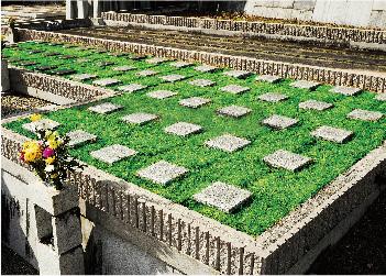 樹木葬「弥勒苑」