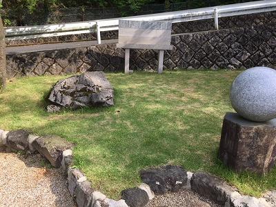 樹木葬区画のメンテナンス
